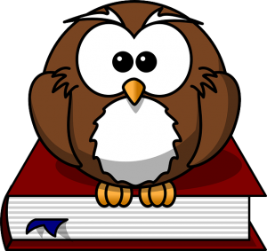 owl sitting on a book_studying tutorials and guidelines for branches